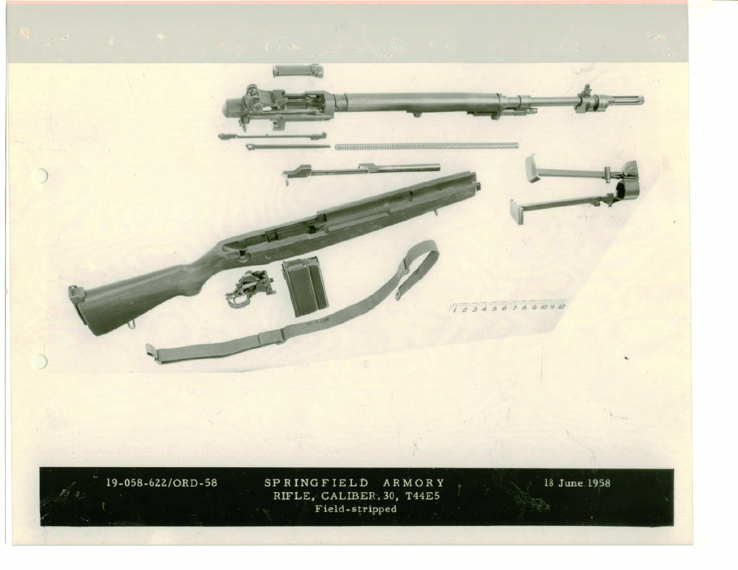 Springfield Armory Museum - Archival Items Search Results